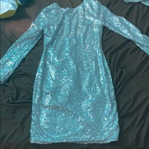 Silver sequence dress .(long sleeve)